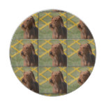 Really Cute Airedale Terrier Paper Plate