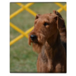 Really Cute Airedale Terrier Plaque