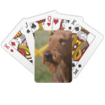 Really Cute Airedale Terrier Playing Cards