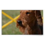 Really Cute Airedale Terrier Rectangular Sticker