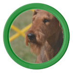 Really Cute Airedale Terrier Set Of Poker Chips