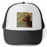 Really Cute Airedale Terrier Trucker Hat