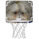 Resting Havanese Dog Mini Basketball Hoop