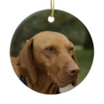 Rhodesian Ridgeback Dog Ornament