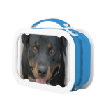 Rottweiler Dog Lunch Box