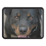Rottweiler Picture Tow Hitch Cover