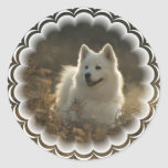 Samoyed Stickers