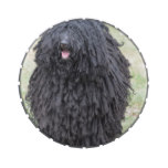Shaggy Puli Dog Jelly Belly Candy Tin