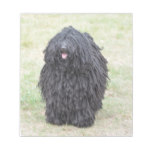 Shaggy Puli Dog Notepad