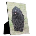 Shaggy Puli Dog Plaque
