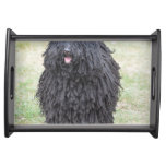 Shaggy Puli Dog Serving Tray