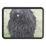 Shaggy Puli Dog Tow Hitch Cover