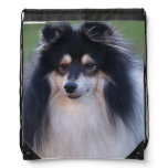 sheltie-4 drawstring bag