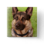 Shepherd Dog Square Pin