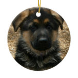 Shepherd Puppy  Ornament