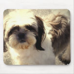 Shih-Tsu Dog Mouse Pad
