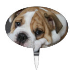 Sleeping Bulldog Cake Topper