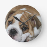 Sleeping Bulldog Clock