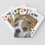 Sleeping Bulldog Deck of Cards