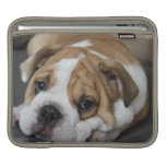 Sleeping Bulldog iPad Sleeve