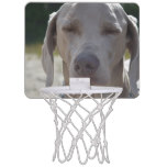 Sleepy Weimaraner Mini Basketball Hoop