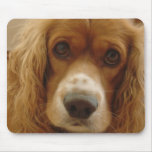 Spaniel Breed Mouse Pad