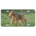 Sweet Airdale Terrier License Plate