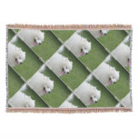 Sweet American Eskimo Dog Throw
