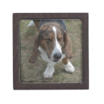 Sweet Basset Hound Keepsake Box