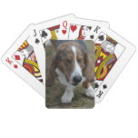 Sweet Basset Hound Playing Cards