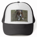 Sweet Basset Hound Trucker Hat
