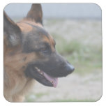Sweet German Shepherd Dog Square Paper Coaster