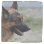 Sweet German Shepherd Dog Stone Coaster