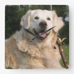 Sweet Golden Retriever Wall Clock