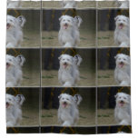 Sweet Sheepdog Shower Curtain