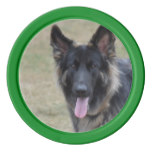 Sweet Shiloh Shepherd Poker Chip Set