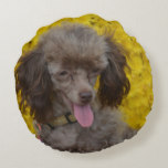 Sweet Tiny Brown Poodle Round Pillow