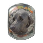Sweet Weimaraner Glass Candy Jar