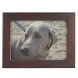 Sweet Weimaraner Keepsake Box