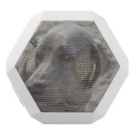 Sweet Weimaraner White Bluetooth Speaker