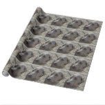 Sweet Weimaraner Wrapping Paper