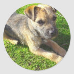 Terrier Puppy Sticker