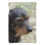Wire Haired Daschund Dog Case For The iPad Mini