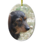 Wire Haired Daschund Dog Ceramic Ornament