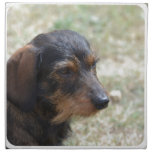 Wire Haired Daschund Dog Cloth Napkin