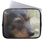 Wire Haired Daschund Dog Computer Sleeve
