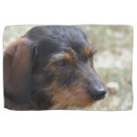 Wire Haired Daschund Dog Hand Towel