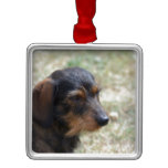 Wire Haired Daschund Dog Metal Ornament