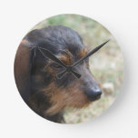 Wire Haired Daschund Dog Round Clock