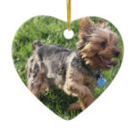 York Terrier Dog Ornament
